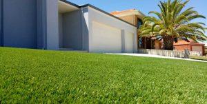 Bunbury Natural Grass beautiful front lawn