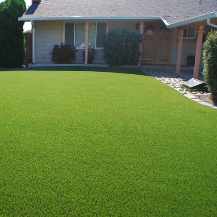 Natural Grass recent install