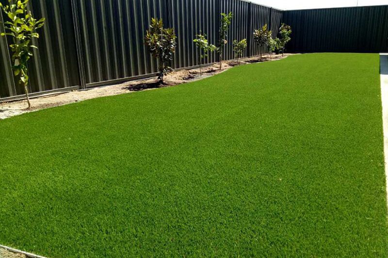 Summer Green Natural Grass