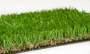 Artificial lawn Western Blend close up