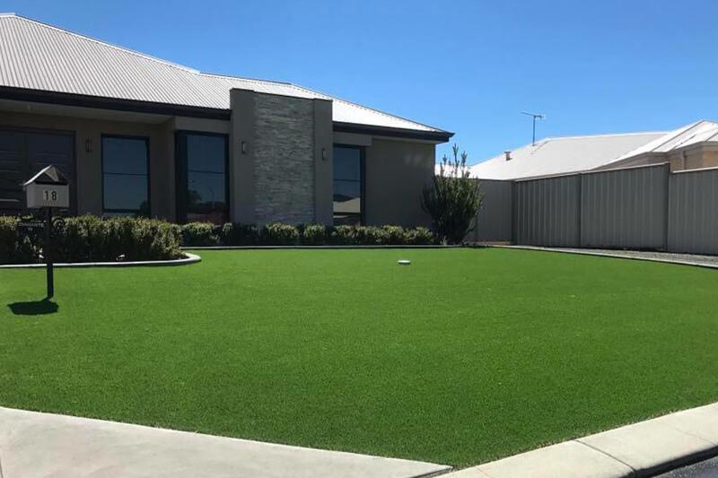 Western Blend Natural Grass